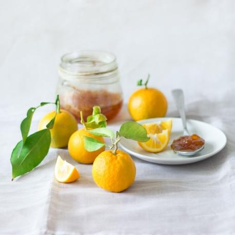 Naranja Amarga producción ecológica