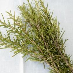 Romer fresc silvestre en rama